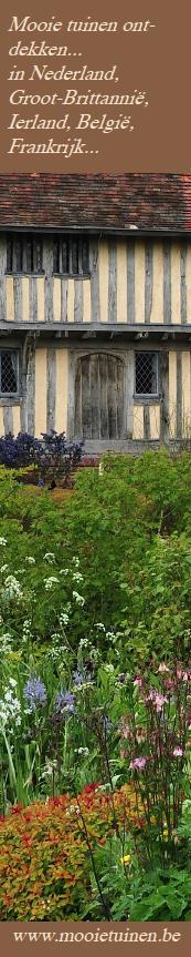 bezoek tulpen boerderij