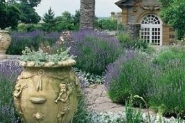 hestercombegarden